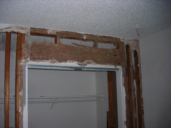 Termites Denver 3