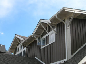 Architecture Residential Custom Craftsman